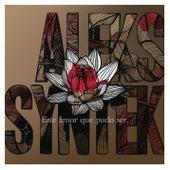 Este Amor Que Pudo Ser de Aleks Syntek