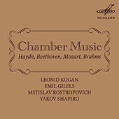 Kogan, Rostropovich, Gilels, Shapiro: Chamber Music by Various Artists