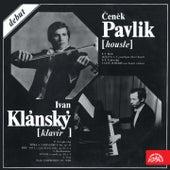 Bach, Tchaikovsky, Rachmaninov & Liszt von Various Artists