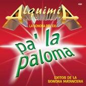 Païla Paloma by Alquimia La Sonora Del XXI