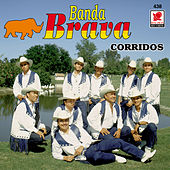 Corridos - Banda Brava by Banda Brava