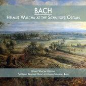 Helmut Walcha at the Schnitger Organ by Helmut Walcha