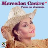 Paloma Que Atravesando by Mercedes Castro