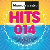 Blanco y Negro Hits 2014 de Various Artists