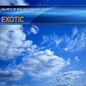 Best of New Age Collection Vol.9 - Exotic de Various Artists