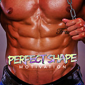 Perfect Shape Motivation de Various Artists