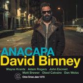 Anacapa by David Binney