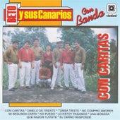 Con Cartitas by Beto Y Sus Canarios
