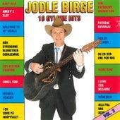 16 Gyldne Hits vol. 3 von Jodle Birge