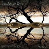 Reflejo de Salamandra
