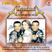 A Bailar by Alquimia La Sonora Del XXI