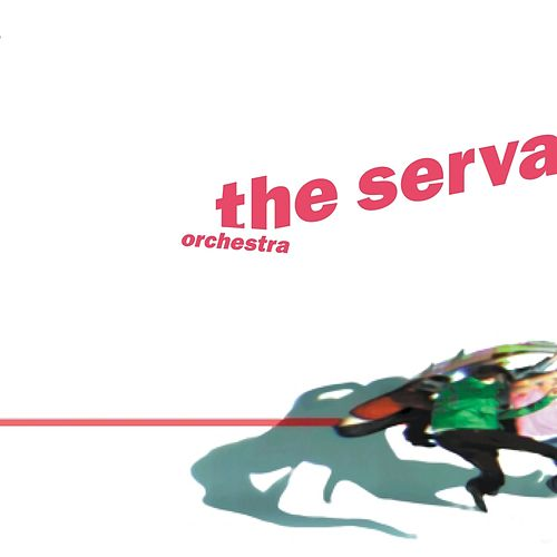Orchestra by The Servant