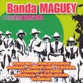Las Clasicas Banda Maguey de Banda Maguey