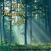 In the Morning Light: Peaceful Reflections for a New Age von Various Artists