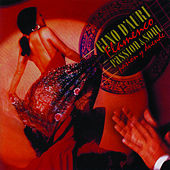 Flamenco Passion & Soul by Gino D'Auri