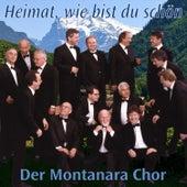 Heimat, wie bist du schön by Various Artists