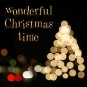 Wonderful Christmas Time de Various Artists