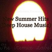 New Summer Hits (Deep House Music Album Compilation) de Various Artists