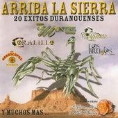 Arriba La Sierra 20 Exitos Duranguenses by Various Artists
