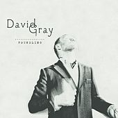 Foundling von David Gray