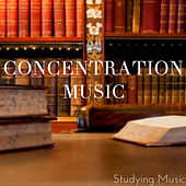 Concentration Music de Various Artists
