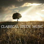 Classical Study Music by Relaxing Piano Music Consort