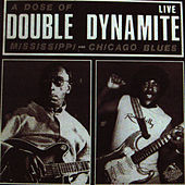 A Dose Of Double Dynamite by Mississippi Fred McDowell