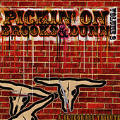 Pickin' On Brooks & Dunn: A Bluegrass Tribute - Volume 2 by Pickin' On
