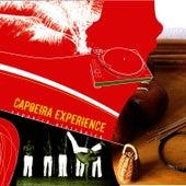 Capoeira Electronica de Capoeira Experience