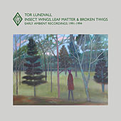 Insect Wings, Leaf Matter & Broken Twigs: Early Ambient Recordings (1991-1994) by Tor Lundvall