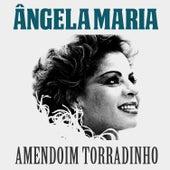Amendoim Torradinho de Ângela Maria