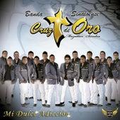 Mi Dulce Adicción by Banda Cruz de Oro