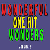 Wonderful One Hit Wonders, Vol. 2 von Various Artists