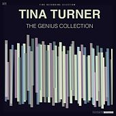 The Genius Collection by Tina Turner