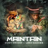 Maintain (feat. Joey Bada$$) - Single de Dizzy Wright