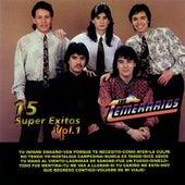 15 Super Exitos, Vol. 1 by Los Temerarios