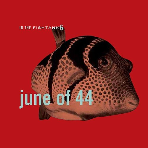 In The Fishtank 6 by June of 44