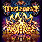 Tribalessence 2 by Various Artists