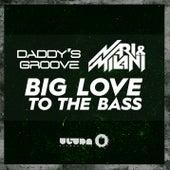 Big Love to the Bass by Nari & Milani