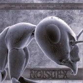 The Beauty Of Destruction by Noisuf-X