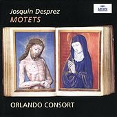 Josquin Desprez: Motets by Various Artists