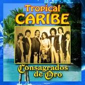 Consagrados de Oro by Tropical Caribe