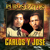 Puros Exitos by Carlos Y Jose