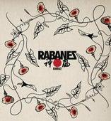 Kamikaze by Los Rabanes