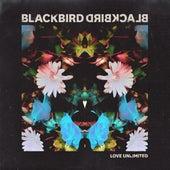 Love Unlimited by Blackbird Blackbird