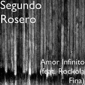 Amor Infinito (feat. Rockola Fina) by Segundo Rosero