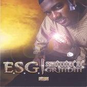 Shinin' N' Grindin' by E.S.G.