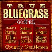 True Bluegrass Gospel de Various Artists