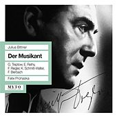 Bittner: Der Musikant by Various Artists