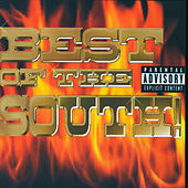 Best Of The South de Various Artists